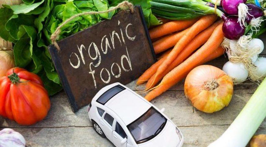 Apakah Makanan Organik Dapat Mencegah Anak Terkena Alergi?